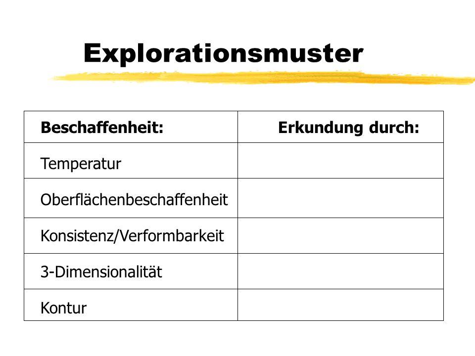 Explorationsmuster Beschaffenheit: Erkundung durch: Temperatur