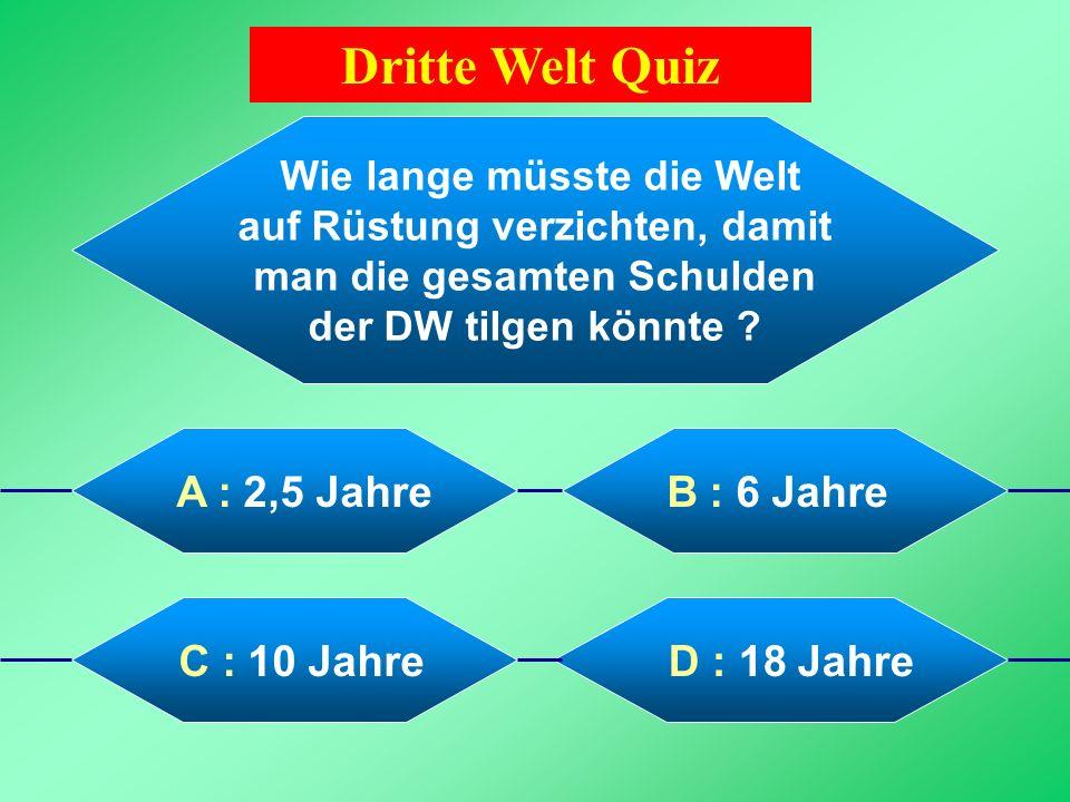 Dritte Welt Quiz Wie lange müsste die Welt auf Rüstung verzichten, damit man die gesamten Schulden der DW tilgen könnte