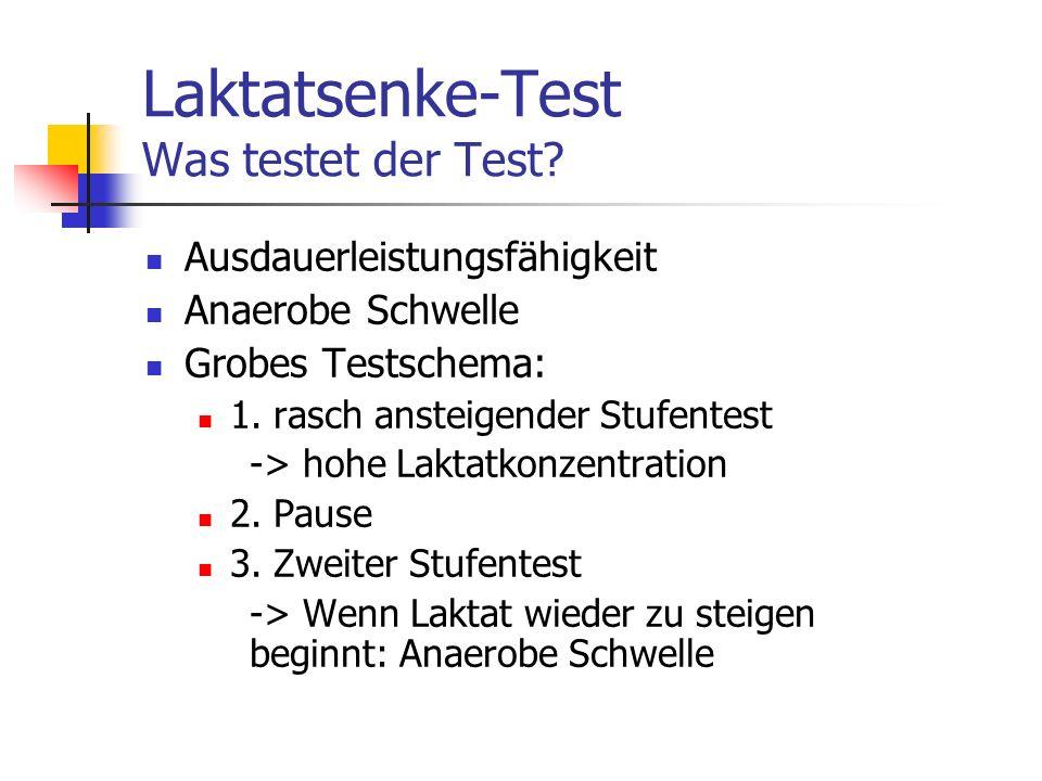 Laktatsenke-Test Was testet der Test