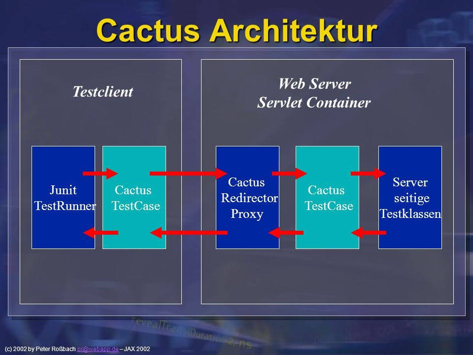 Cactus Architektur Web Server Testclient Servlet Container