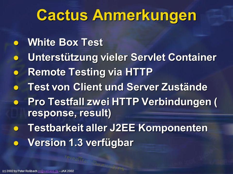 Cactus Anmerkungen White Box Test