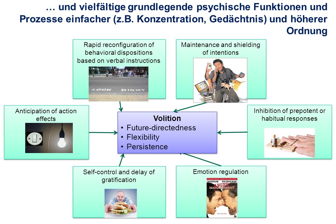 … und vielfältige grundlegende psychische Funktionen und Prozesse einfacher (z.B. Konzentration, Gedächtnis) und höherer Ordnung