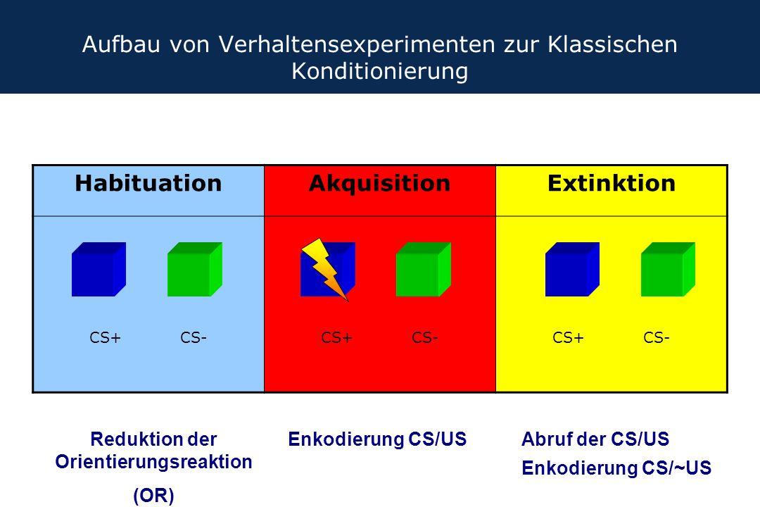 Aufbau von Verhaltensexperimenten zur Klassischen Konditionierung
