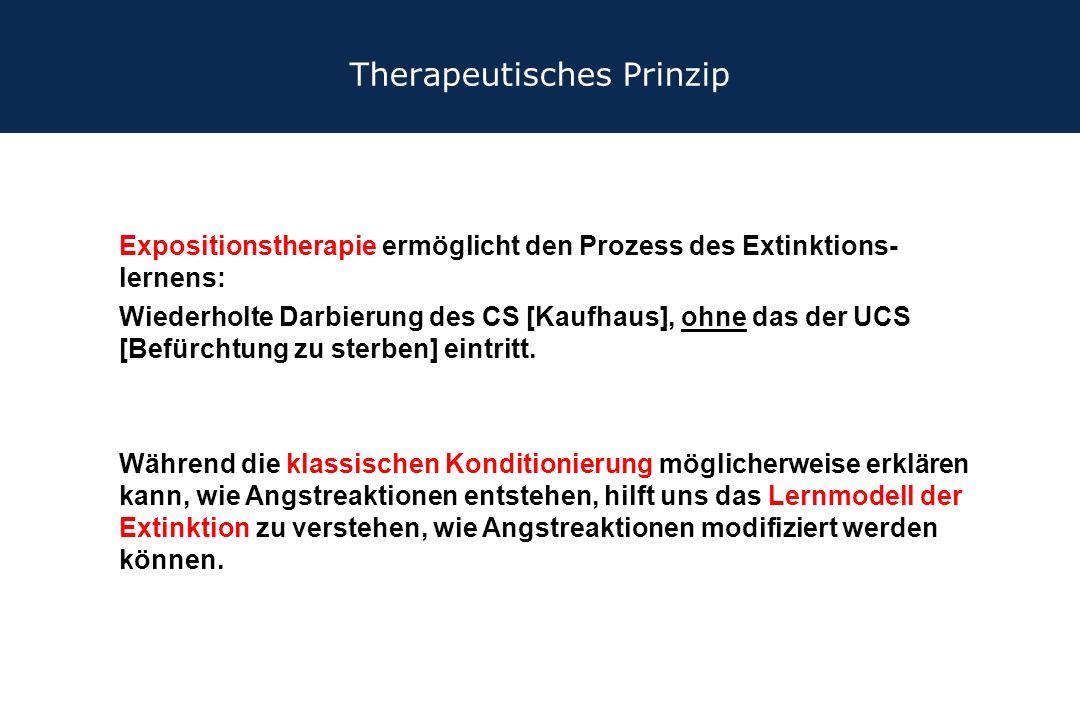 Therapeutisches Prinzip