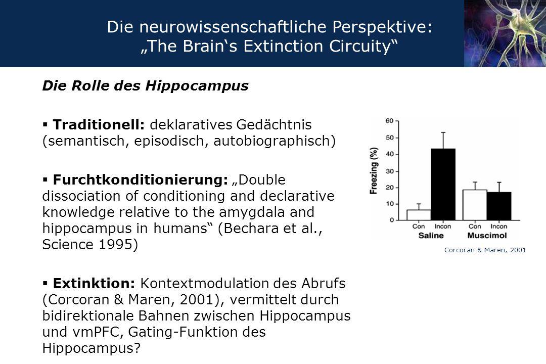 """Die neurowissenschaftliche Perspektive: """"The Brain's Extinction Circuity"""