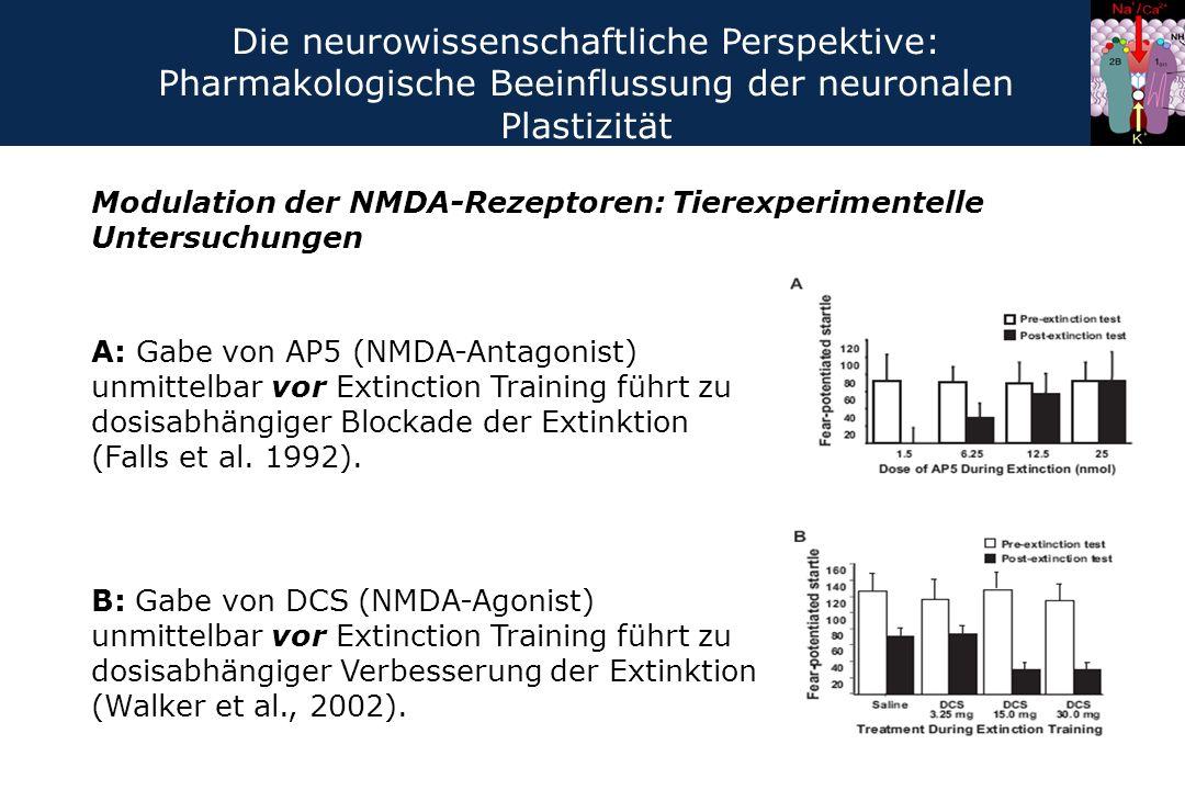 Die neurowissenschaftliche Perspektive: Pharmakologische Beeinflussung der neuronalen Plastizität