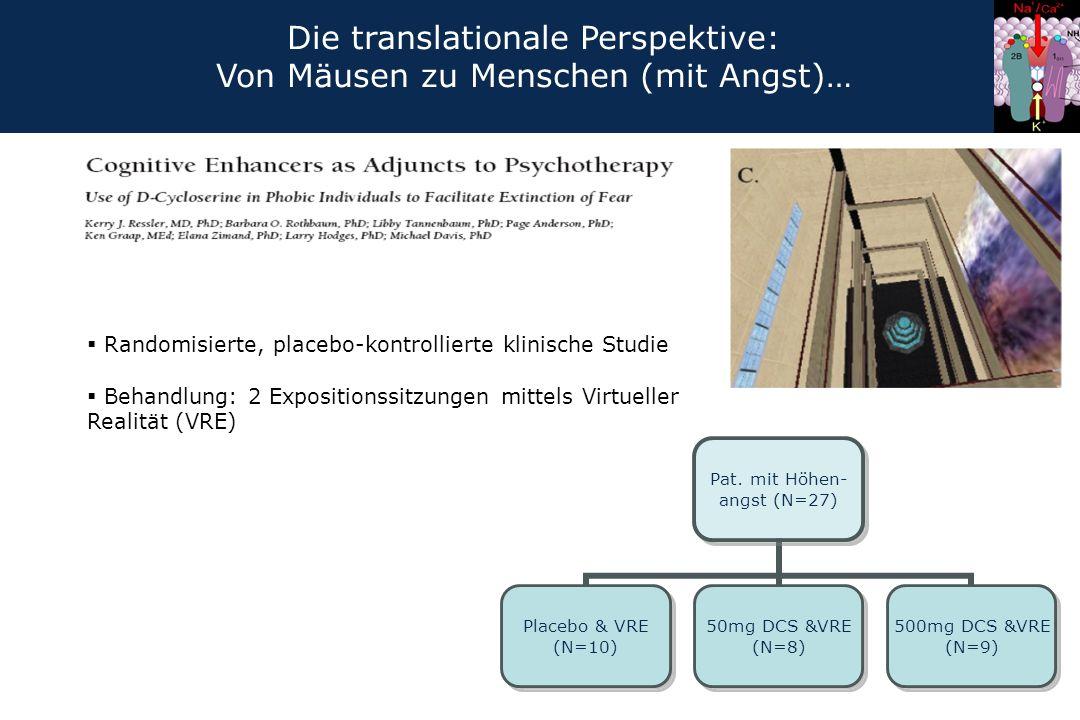 Die translationale Perspektive: Von Mäusen zu Menschen (mit Angst)…
