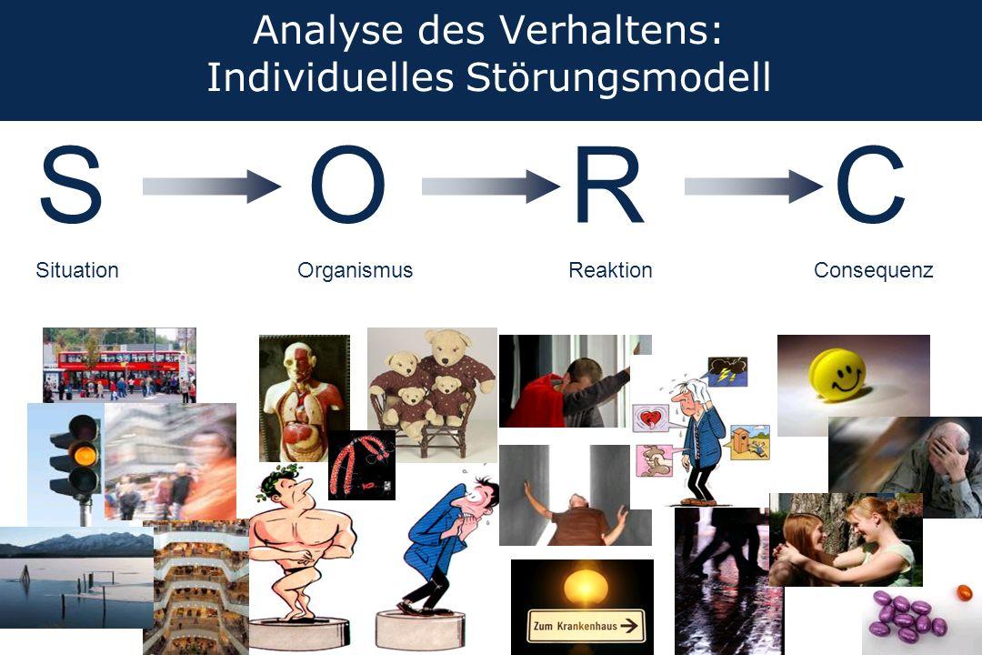 Analyse des Verhaltens: Individuelles Störungsmodell