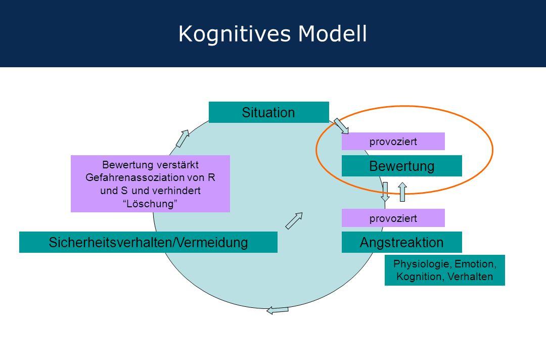 Kognitives Modell Situation Bewertung Sicherheitsverhalten/Vermeidung