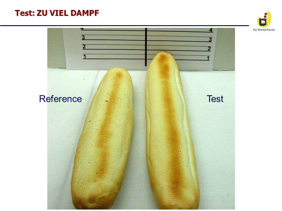 Test: ZU VIEL DAMPF Reference Test