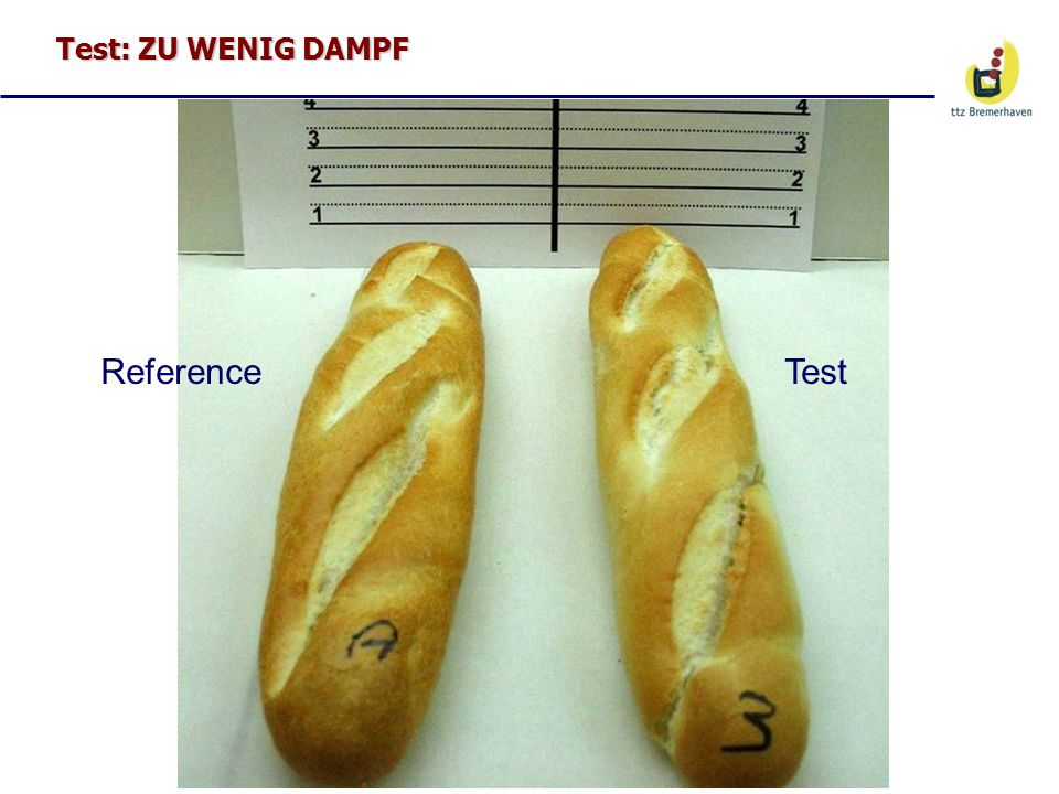 Test: ZU WENIG DAMPF Reference Test