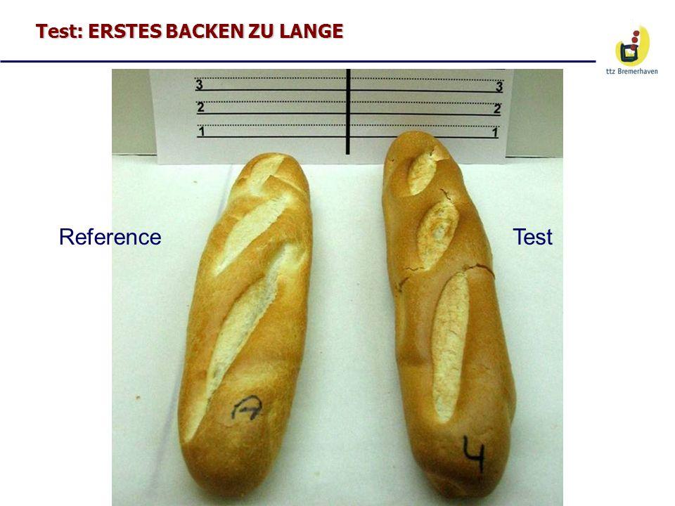 Test: ERSTES BACKEN ZU LANGE