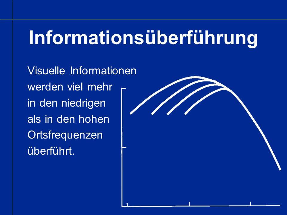 Informationsüberführung