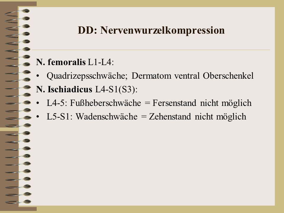 DD: Nervenwurzelkompression