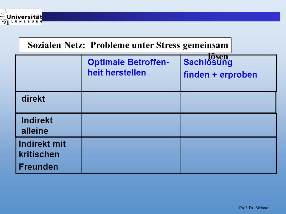 Sozialen Netz: Probleme unter Stress gemeinsam lösen