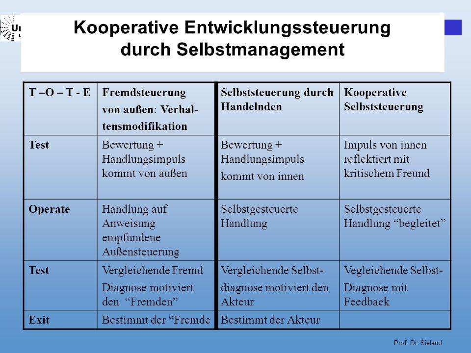 Kooperative Entwicklungssteuerung durch Selbstmanagement