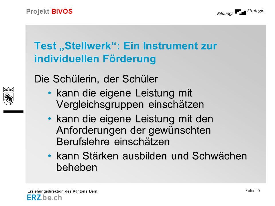 """Test """"Stellwerk : Ein Instrument zur individuellen Förderung"""