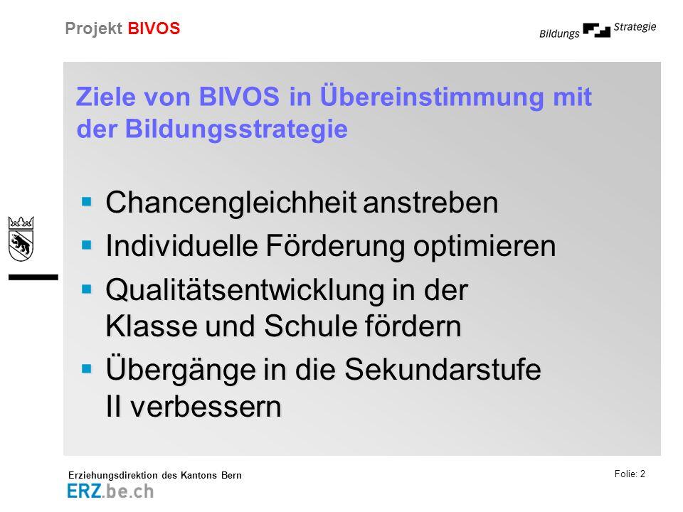 Ziele von BIVOS in Übereinstimmung mit der Bildungsstrategie