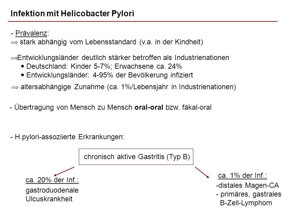 Infektion mit Helicobacter Pylori
