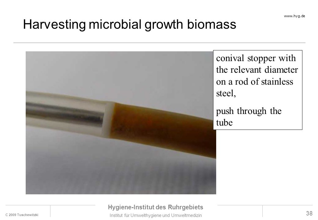 Harvesting microbial growth biomass
