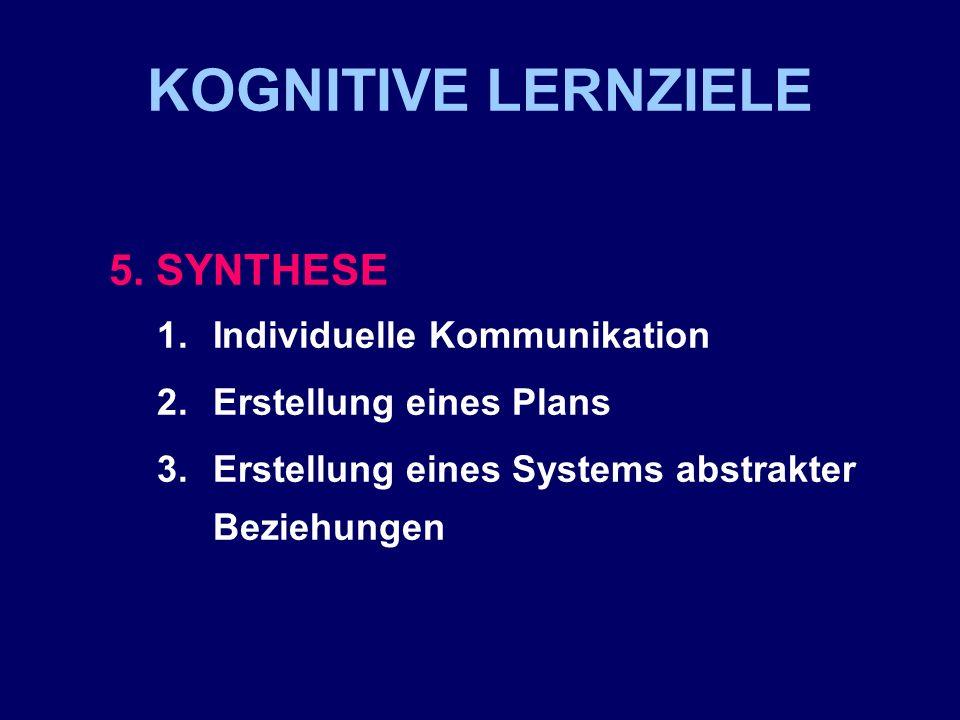 KOGNITIVE LERNZIELE 5. SYNTHESE Individuelle Kommunikation