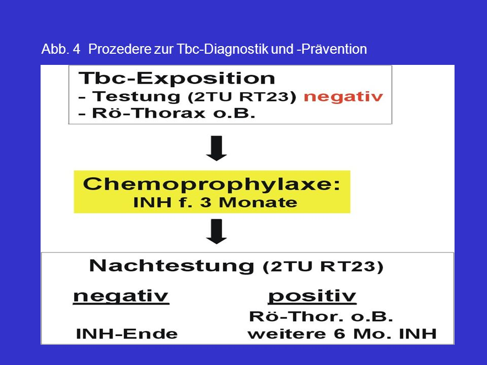 Abb. 4 Prozedere zur Tbc-Diagnostik und -Prävention