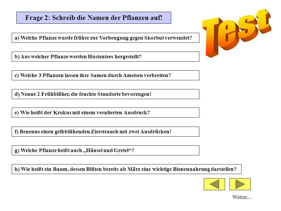 Frage 2: Schreib die Namen der Pflanzen auf!