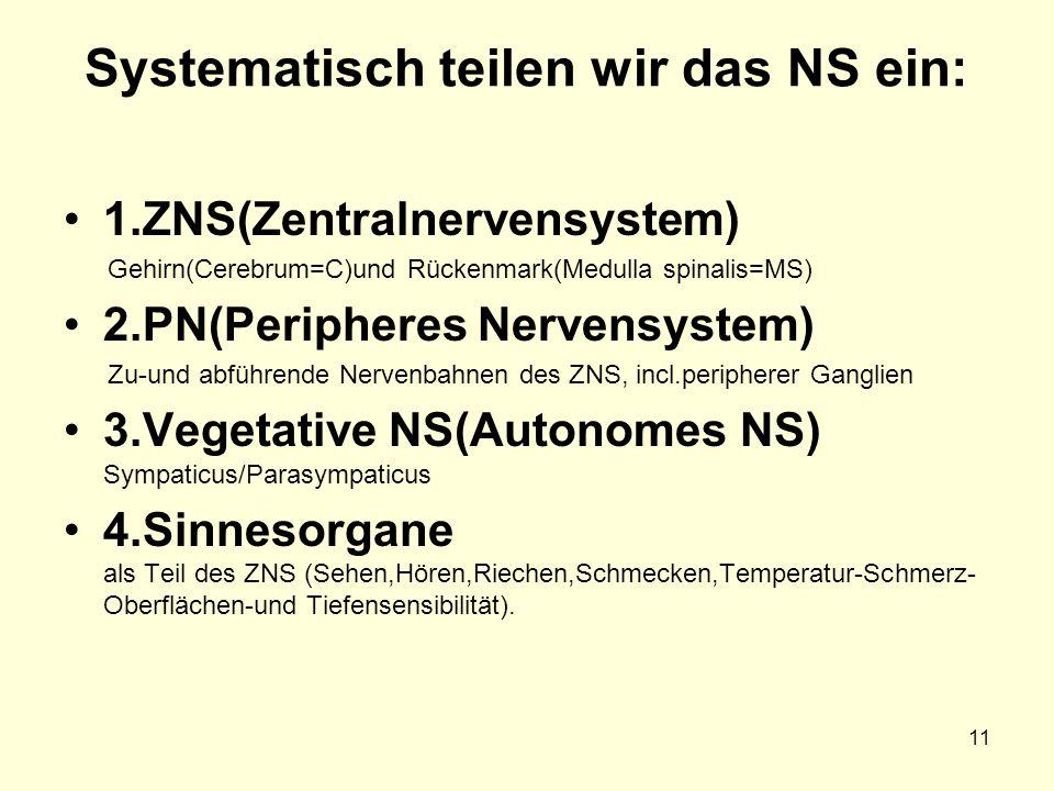 Systematisch teilen wir das NS ein: