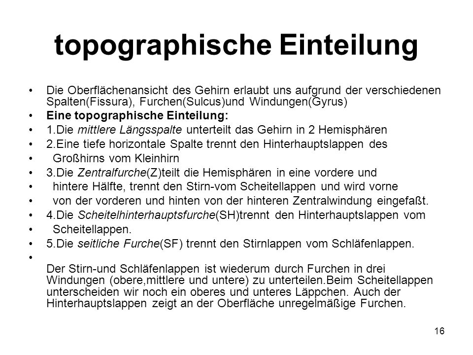 topographische Einteilung