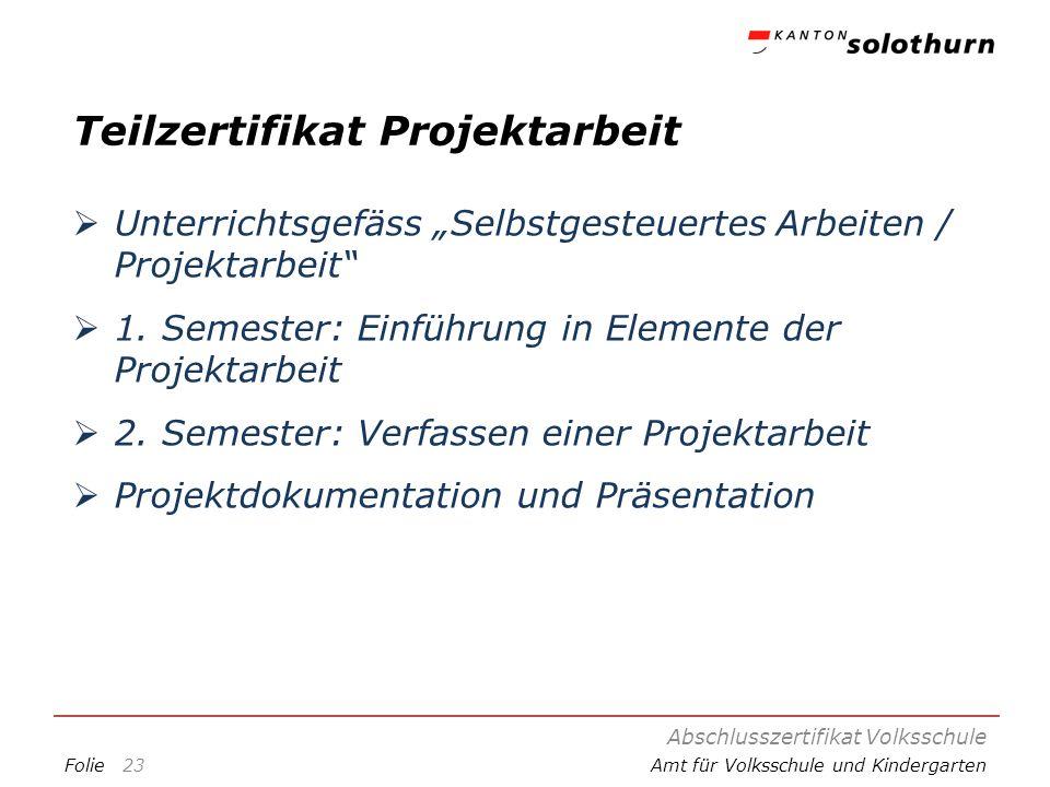 Teilzertifikat Projektarbeit