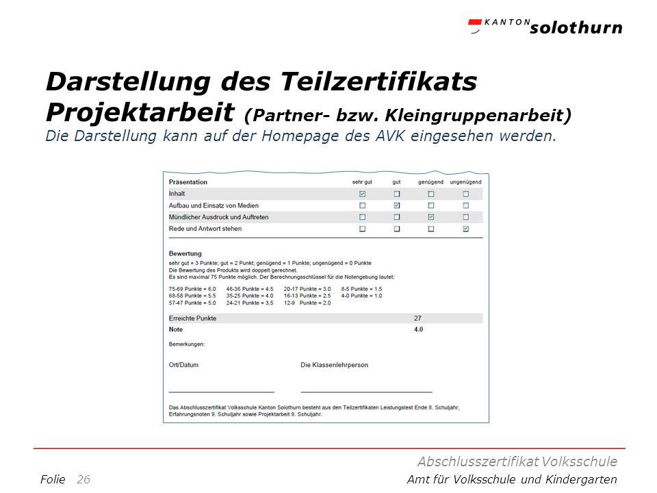Darstellung des Teilzertifikats Projektarbeit (Partner- bzw