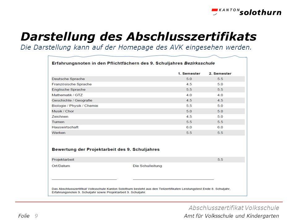 Darstellung des Abschlusszertifikats Die Darstellung kann auf der Homepage des AVK eingesehen werden.