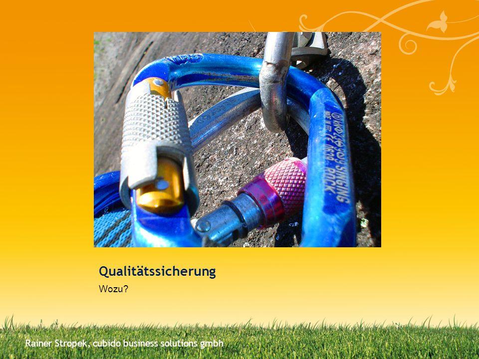 Qualitätssicherung Wozu
