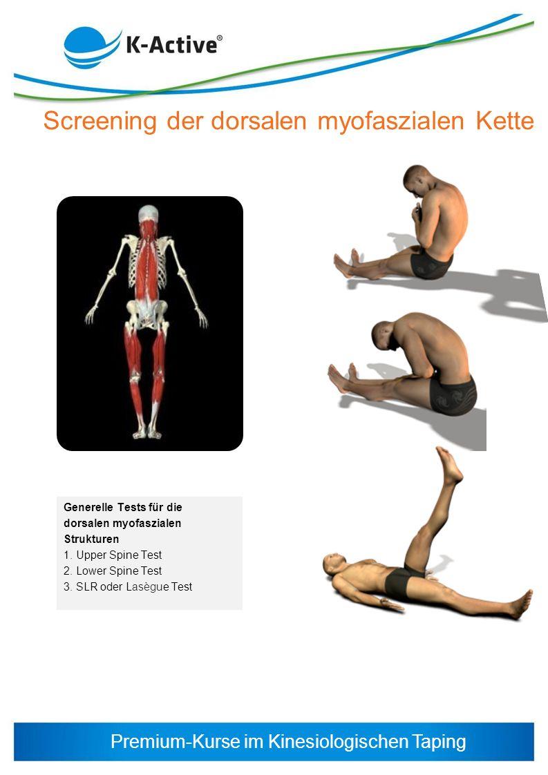 Screening der dorsalen myofaszialen Kette