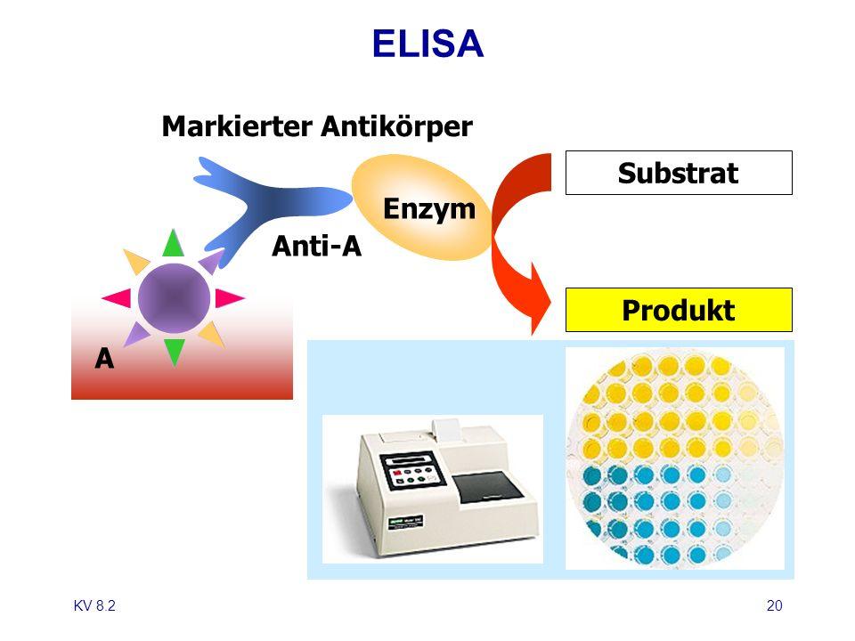 ELISA Markierter Antikörper Substrat Enzym Anti-A Produkt A KV 8.2