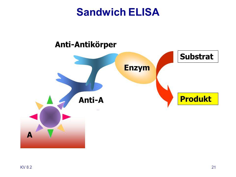 Sandwich ELISA Anti-Antikörper. Substrat. Enzym. Anti-A. Produkt.