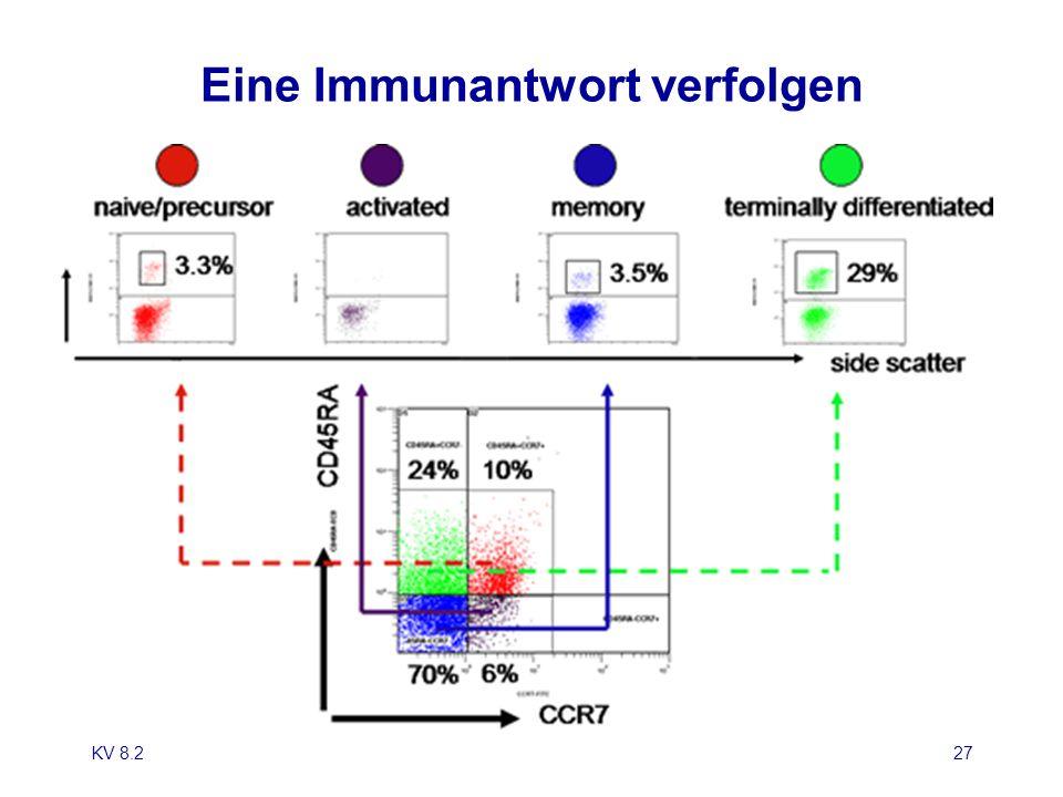 Eine Immunantwort verfolgen