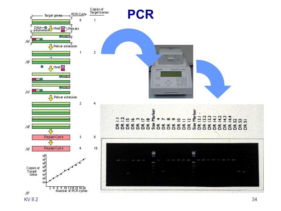 PCR KV 8.2