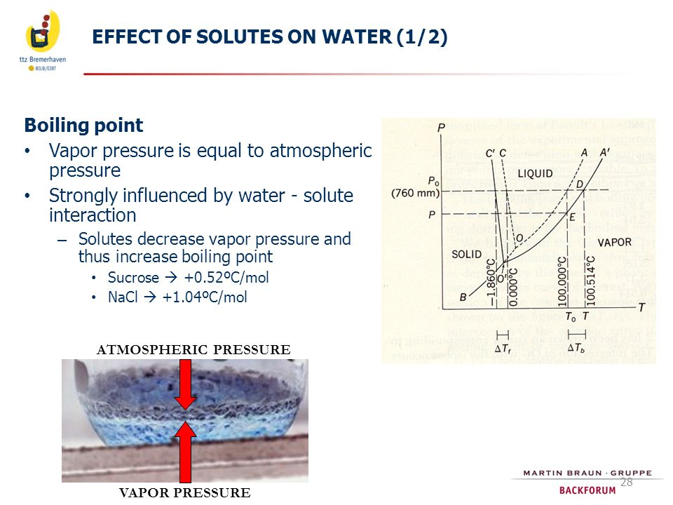 EFFECT OF SOLUTES ON WATER (1/2)