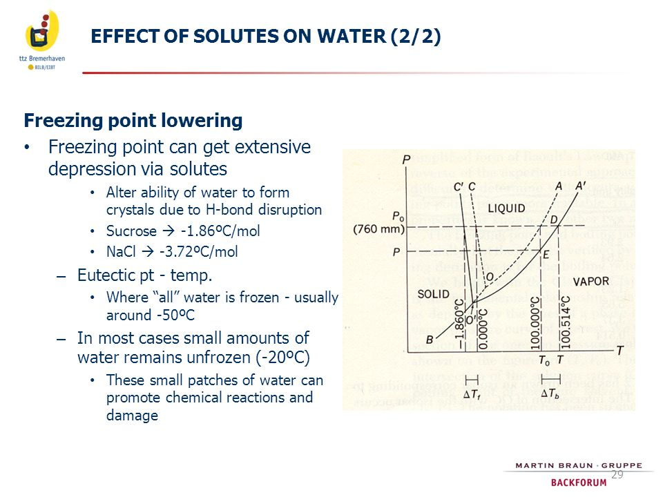 EFFECT OF SOLUTES ON WATER (2/2)