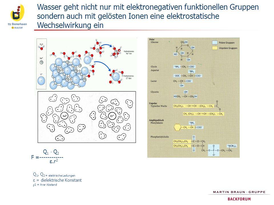 Wasser geht nicht nur mit elektronegativen funktionellen Gruppen sondern auch mit gelösten Ionen eine elektrostatische Wechselwirkung ein