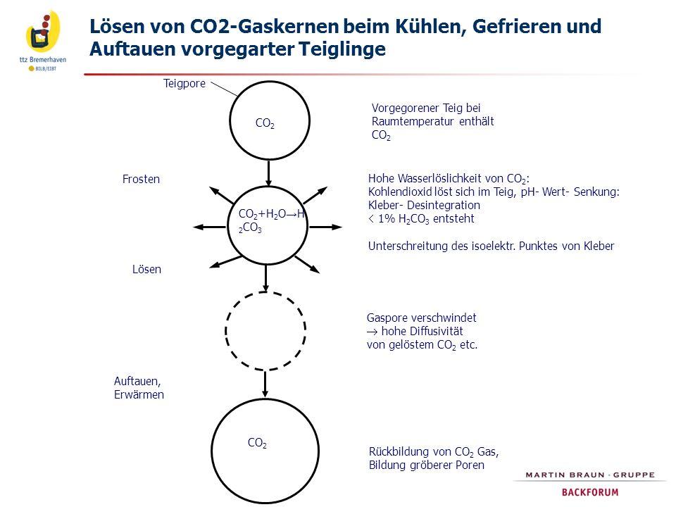 Lösen von CO2-Gaskernen beim Kühlen, Gefrieren und Auftauen vorgegarter Teiglinge