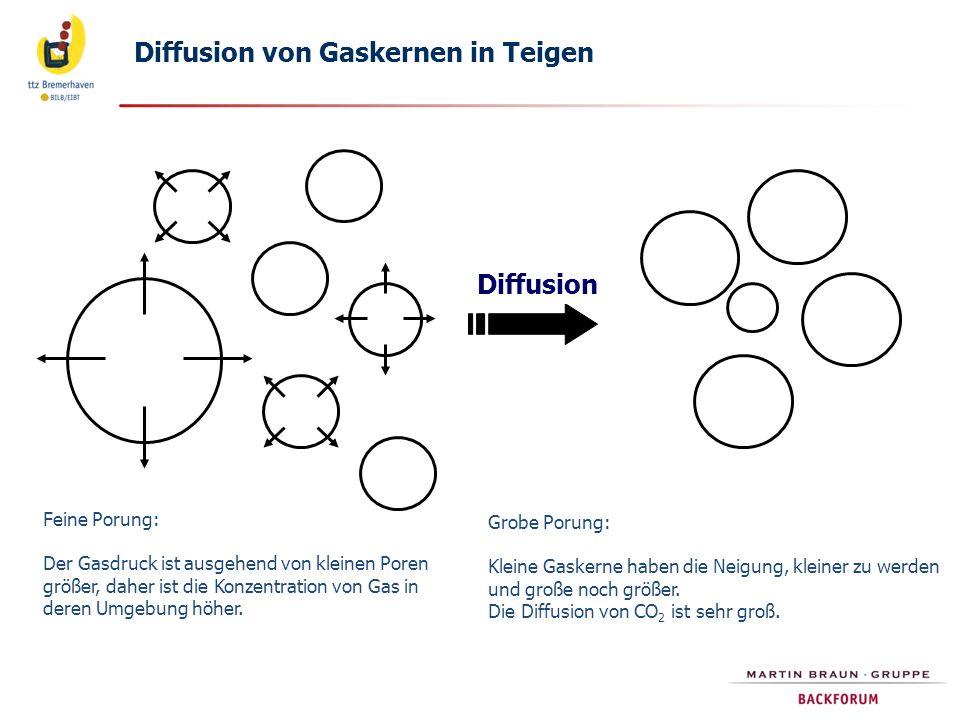 Diffusion von Gaskernen in Teigen