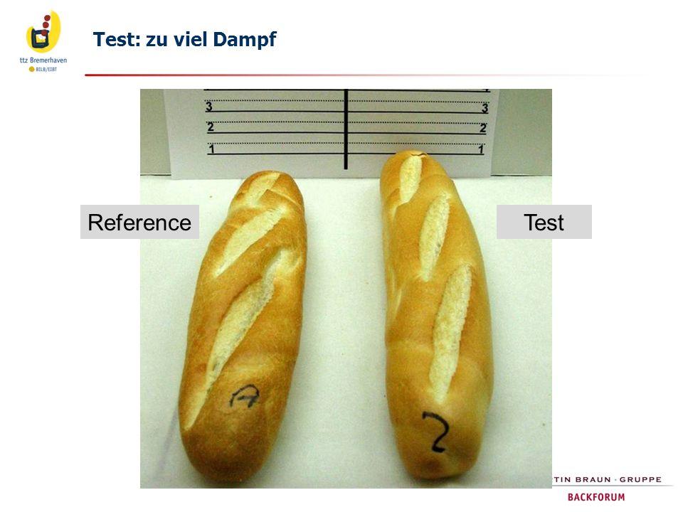 Test: zu viel Dampf Reference Test 20.06.2012