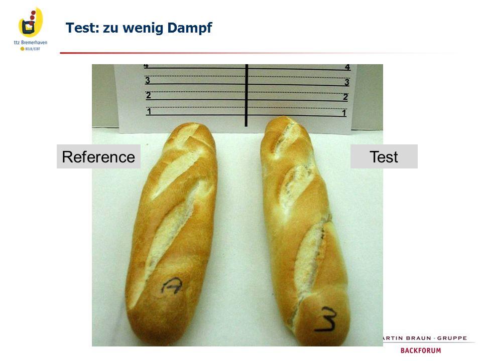 Test: zu wenig Dampf Reference Test 20.06.2012