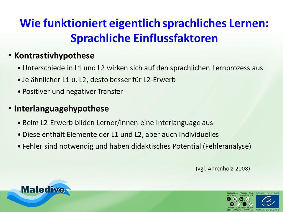 Wie funktioniert eigentlich sprachliches Lernen: Sprachliche Einflussfaktoren