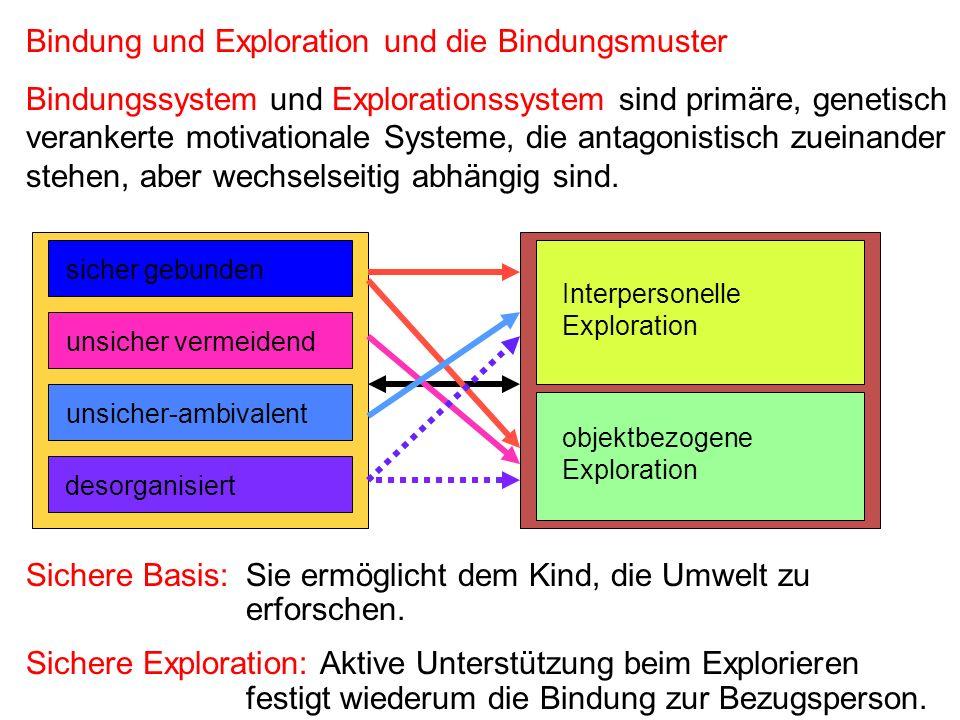 Bindung und Exploration und die Bindungsmuster