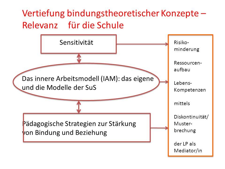 Vertiefung bindungstheoretischer Konzepte – Relevanz für die Schule