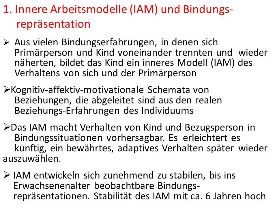 1. Innere Arbeitsmodelle (IAM) und Bindungs- repräsentation