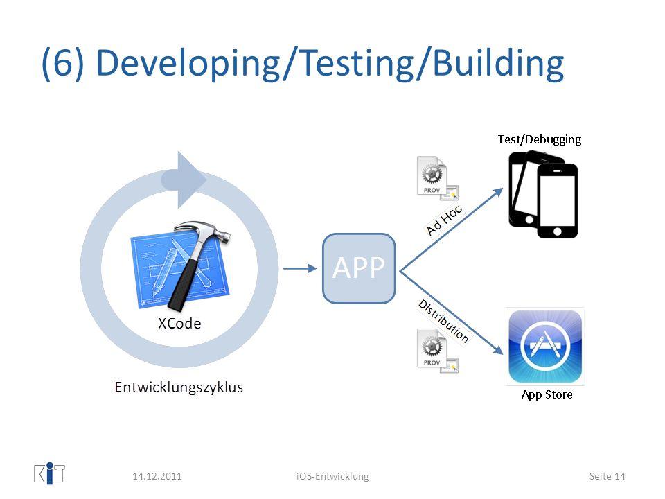 (6) Developing/Testing/Building
